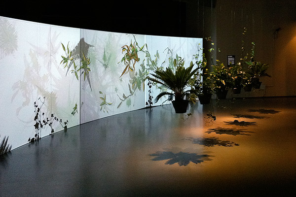Sistemas vivos: arte y vida artificial